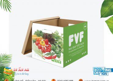 Mẫu hộp Carton Rau quả tươi sạch FVF