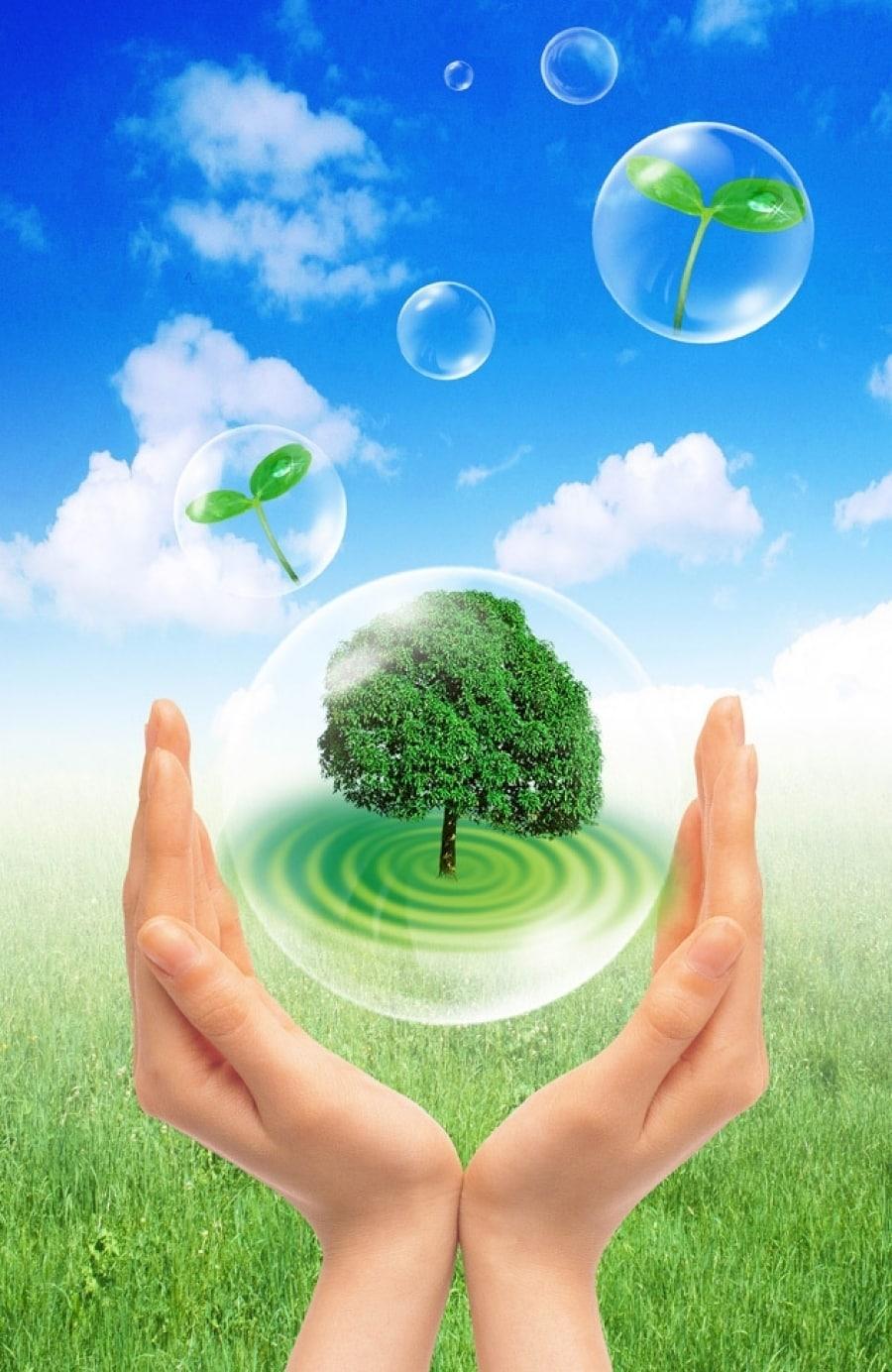 Mẫu poster tuyên truyền bảo vệ trái đất