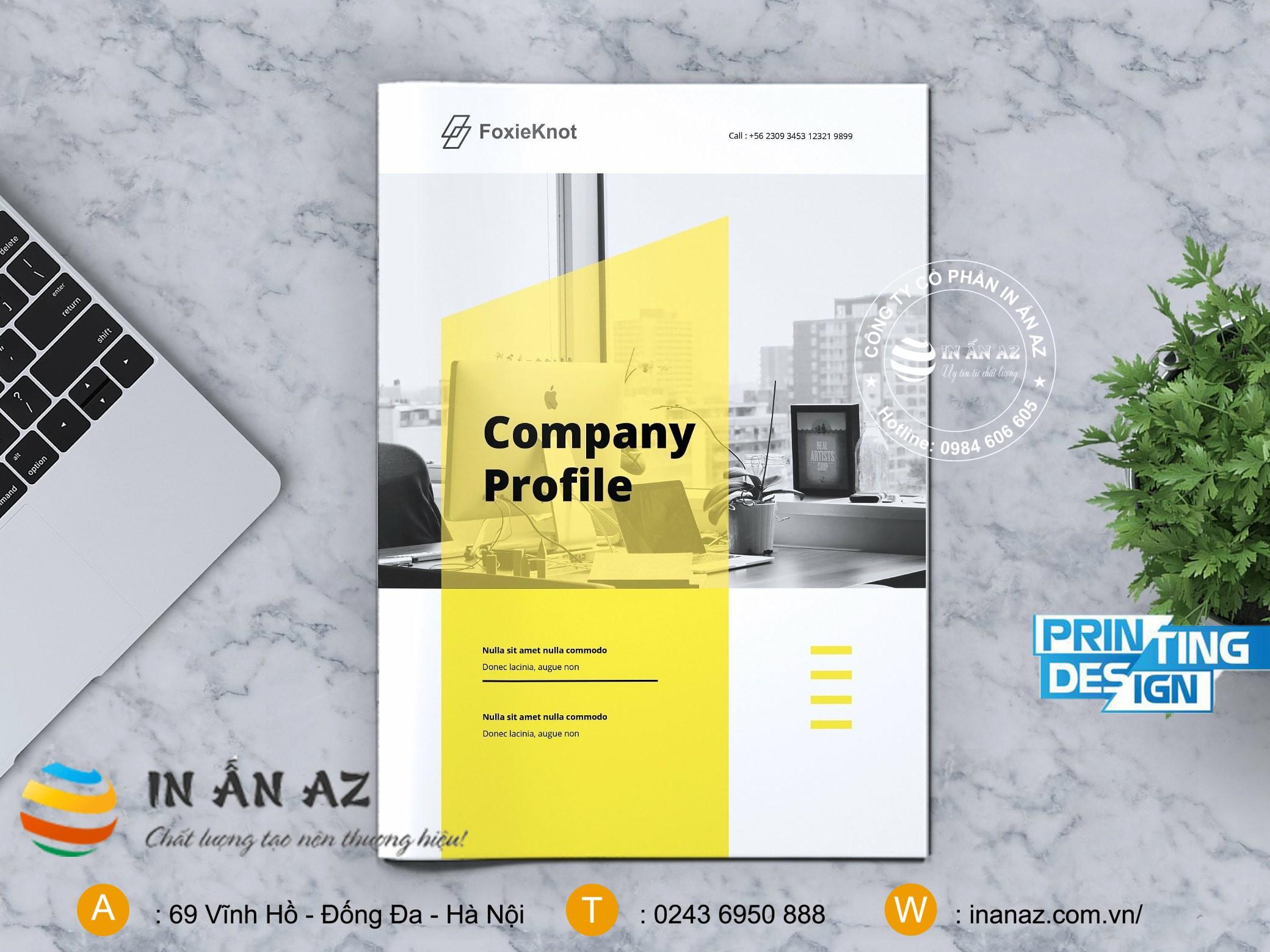 profile công ty dep 5