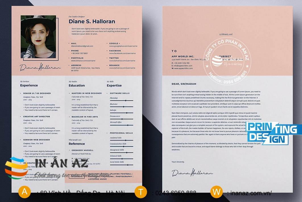 mẫu hồ sơ năng lực cá nhân 2